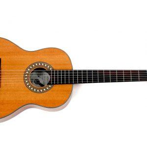 Hofner Guitar HC504.jpg
