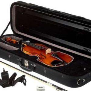 Violin CaseAS90_560_edited.jpg